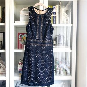 NWOT Navy Lace Ribbed Dress